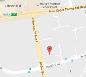 Singapore Babysitter Job Location 460020 - 161003