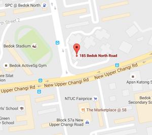 Ad Hoc Babysitter Job Singapore 460185 Location Bedok -161033